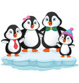 of penguin family vector image