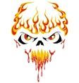 fire face skull vector image