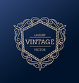 vintage luxury frame design vector image