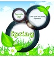 Spring info graphic vector image