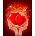 Valentines day background Hands holding two red vector image