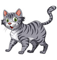 Feline vector image
