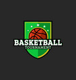 basketball or streetball emblem shield with vector image