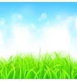 Landscape with Grass and Sky vector image vector image