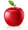 Delicious red apple vector image
