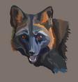 portrait of black fox vector image