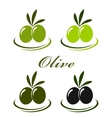 set with colorful olives vector image