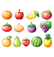 Different kinds of fruits vector image vector image
