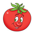 fresh tomato cartoon vector image