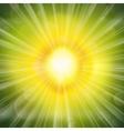 Green Glow vector image
