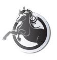 Black horse logo vector image