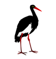 silhouette of a Grus vector image vector image