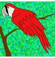 Big Red Parrot vector image vector image