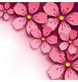 floral background sakura flower vector image
