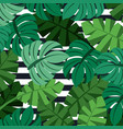 tropical palm leaves jungle leaves seamless floral vector image