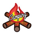 color vintage summer camp emblem vector image