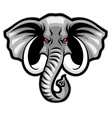 elephant head mascot vector image