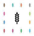 isolated sheaf icon barley element can be vector image