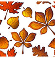 Seamless pattern with autumn leaves of trees vector image