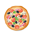 Isolated tasty Italian pizza vector image vector image