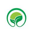 Circle leaf eco nature logo vector image
