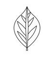 leaf ecology symbol vector image