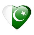 Pakistan flag button vector image