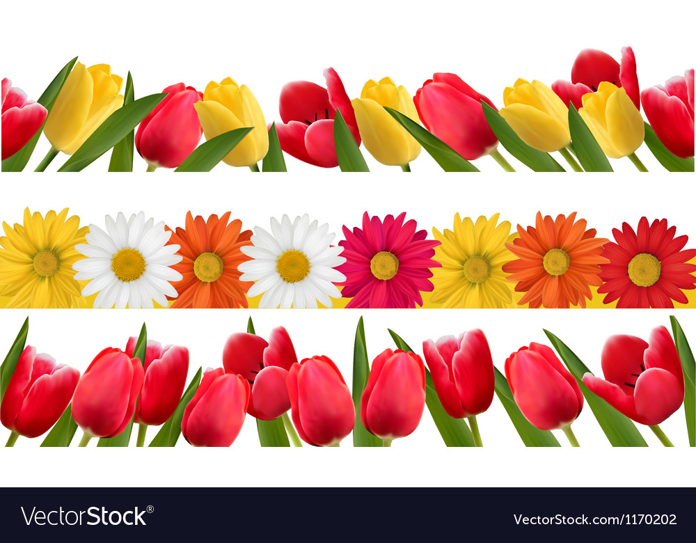 Spring flower borders vector