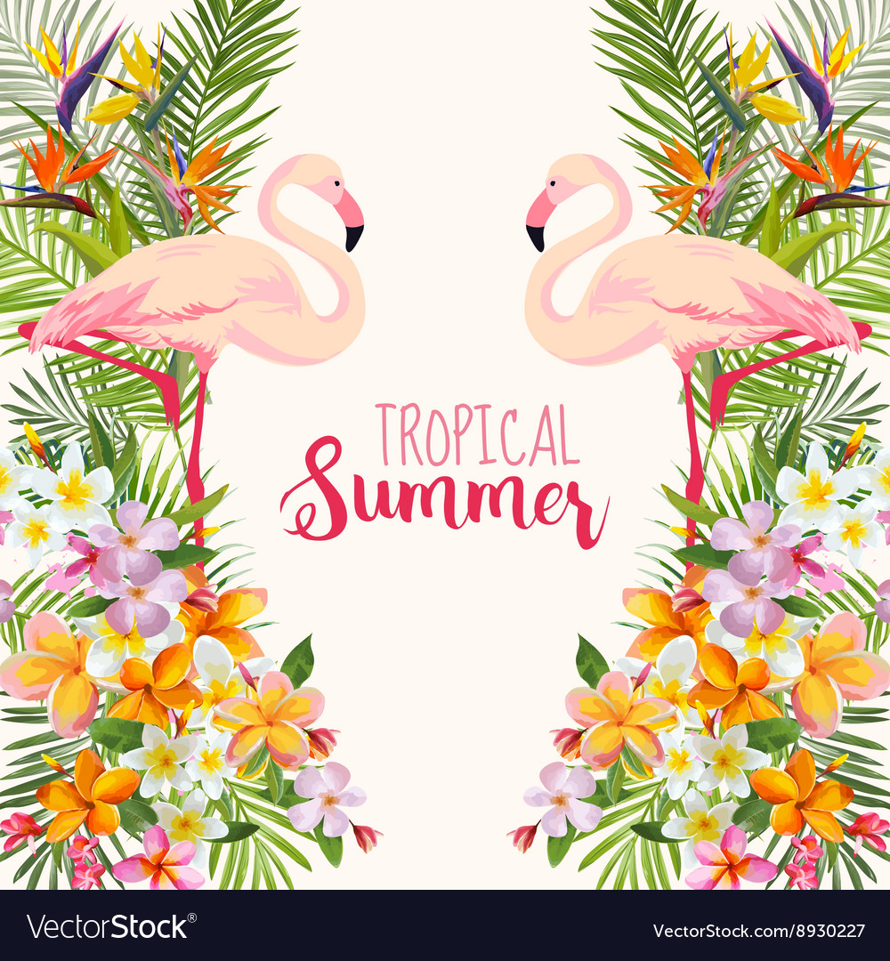 Tropical flowers flamingo bird tropical background vector