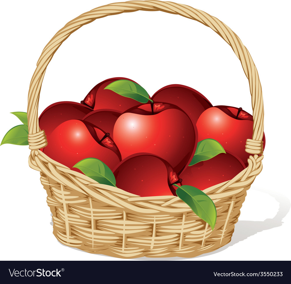 Red apples in a basket isolated on white vector