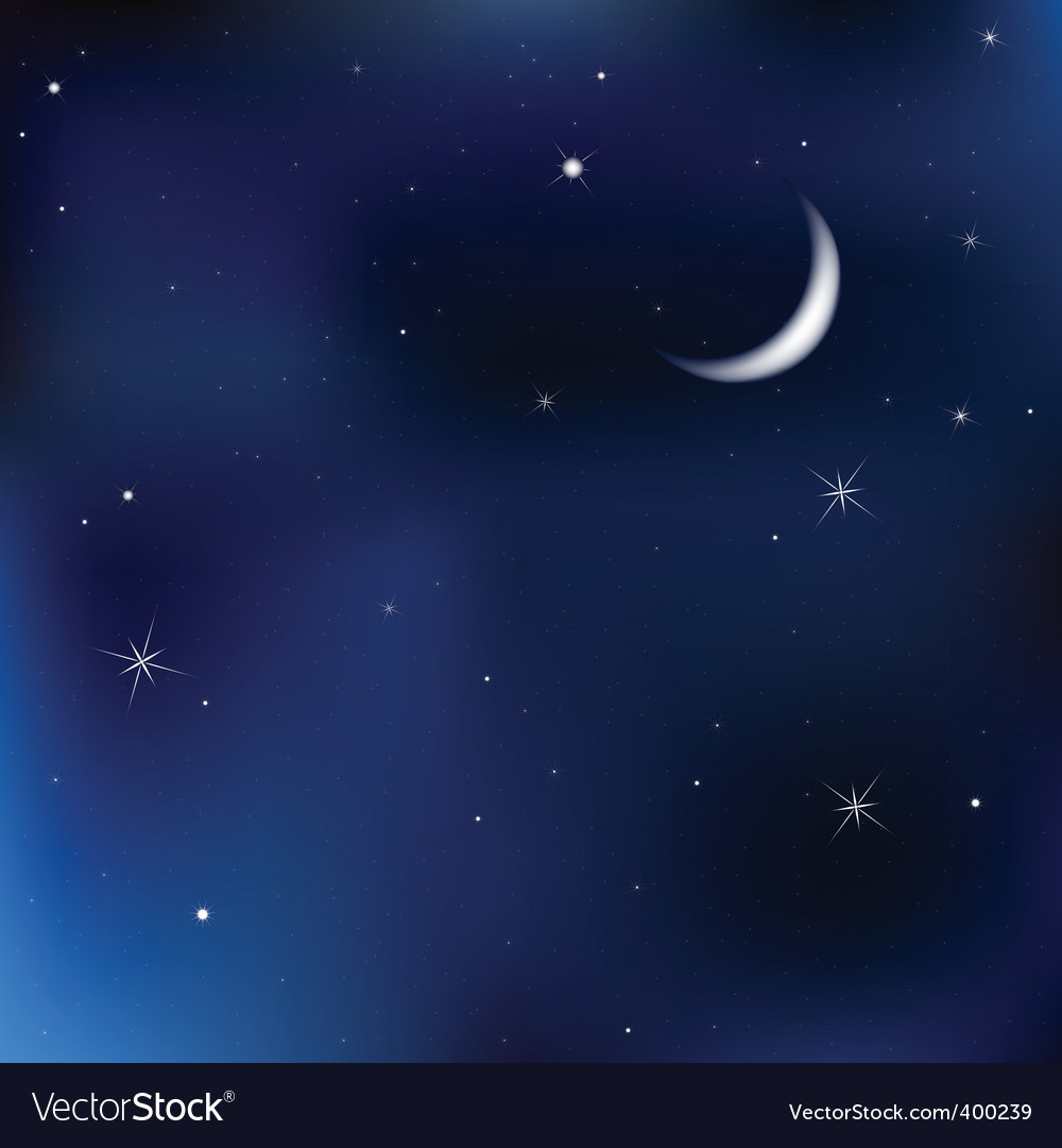 Night sky scene vector