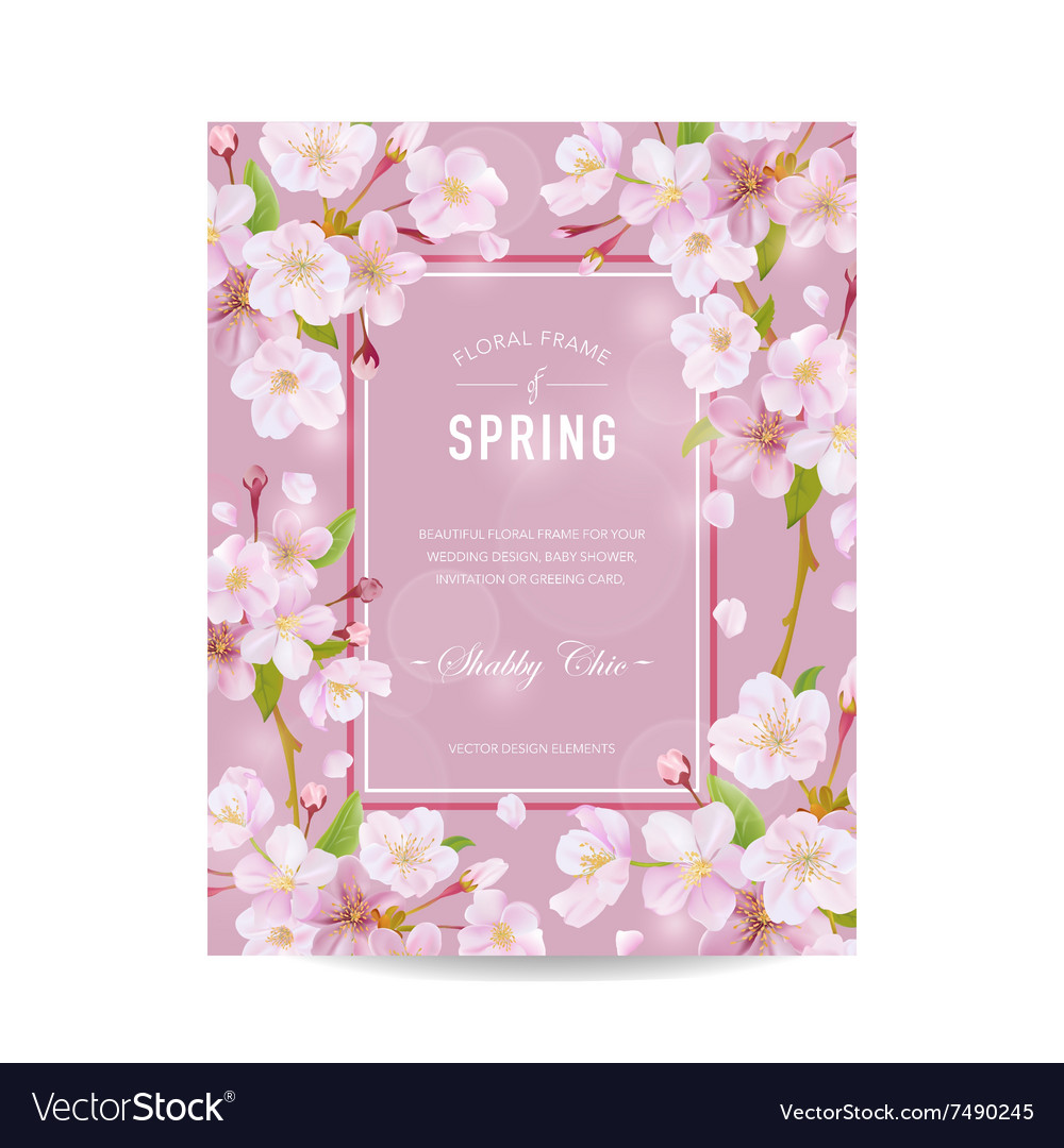 Spring card with cherry blossom vector