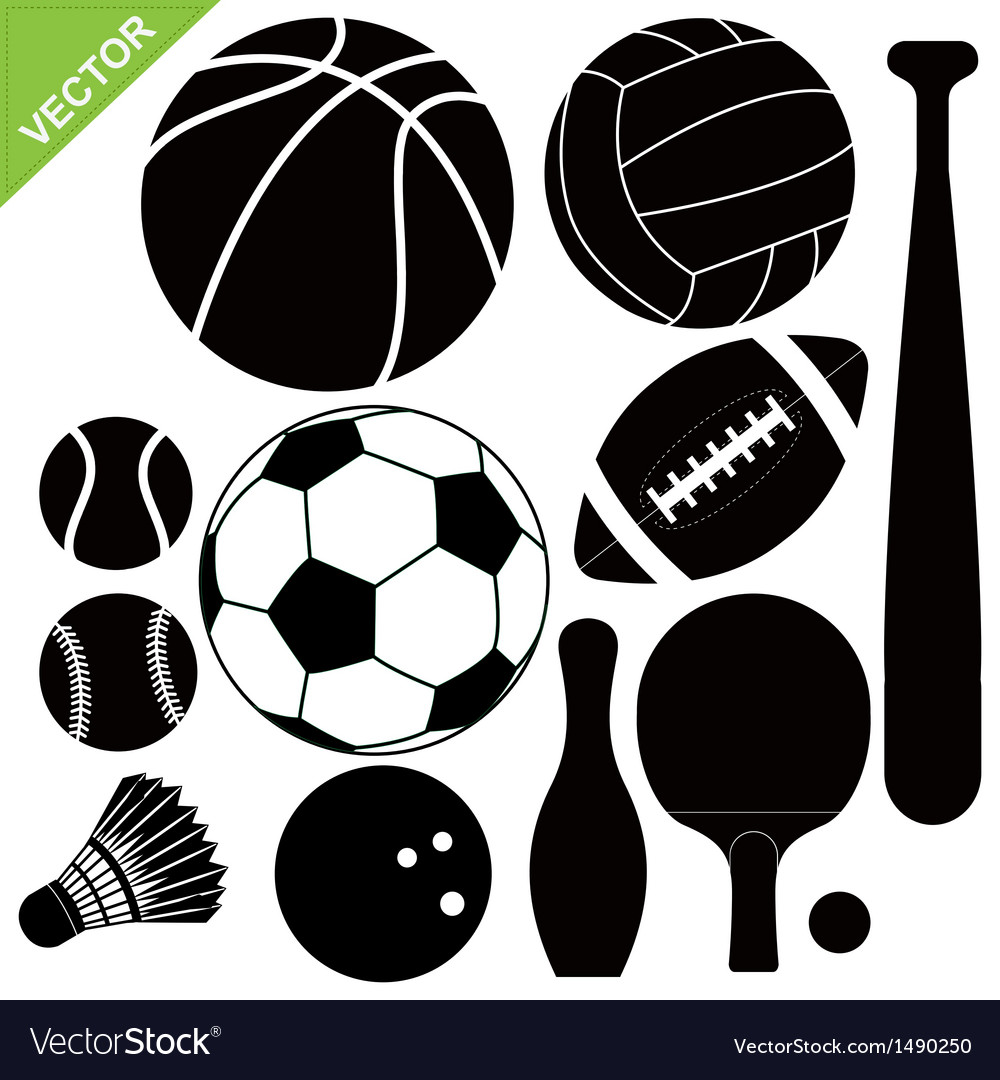 Sport equipment vector