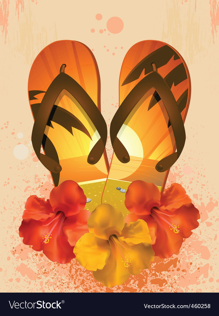 Hibiscus flowers and flip flops vector