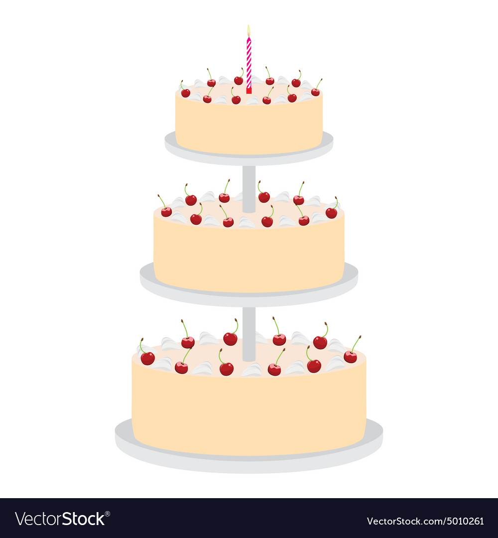 Cake with cherries vector