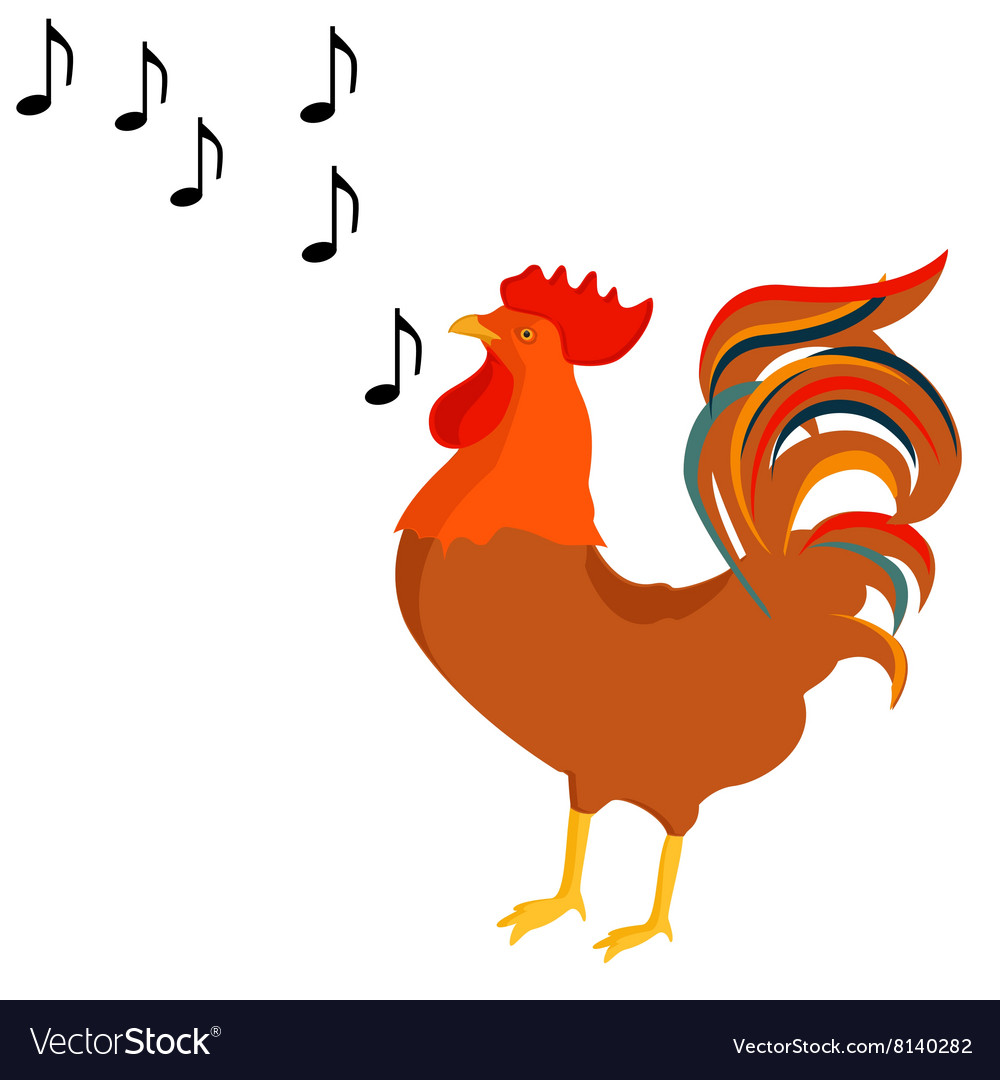 Rooster crows vector