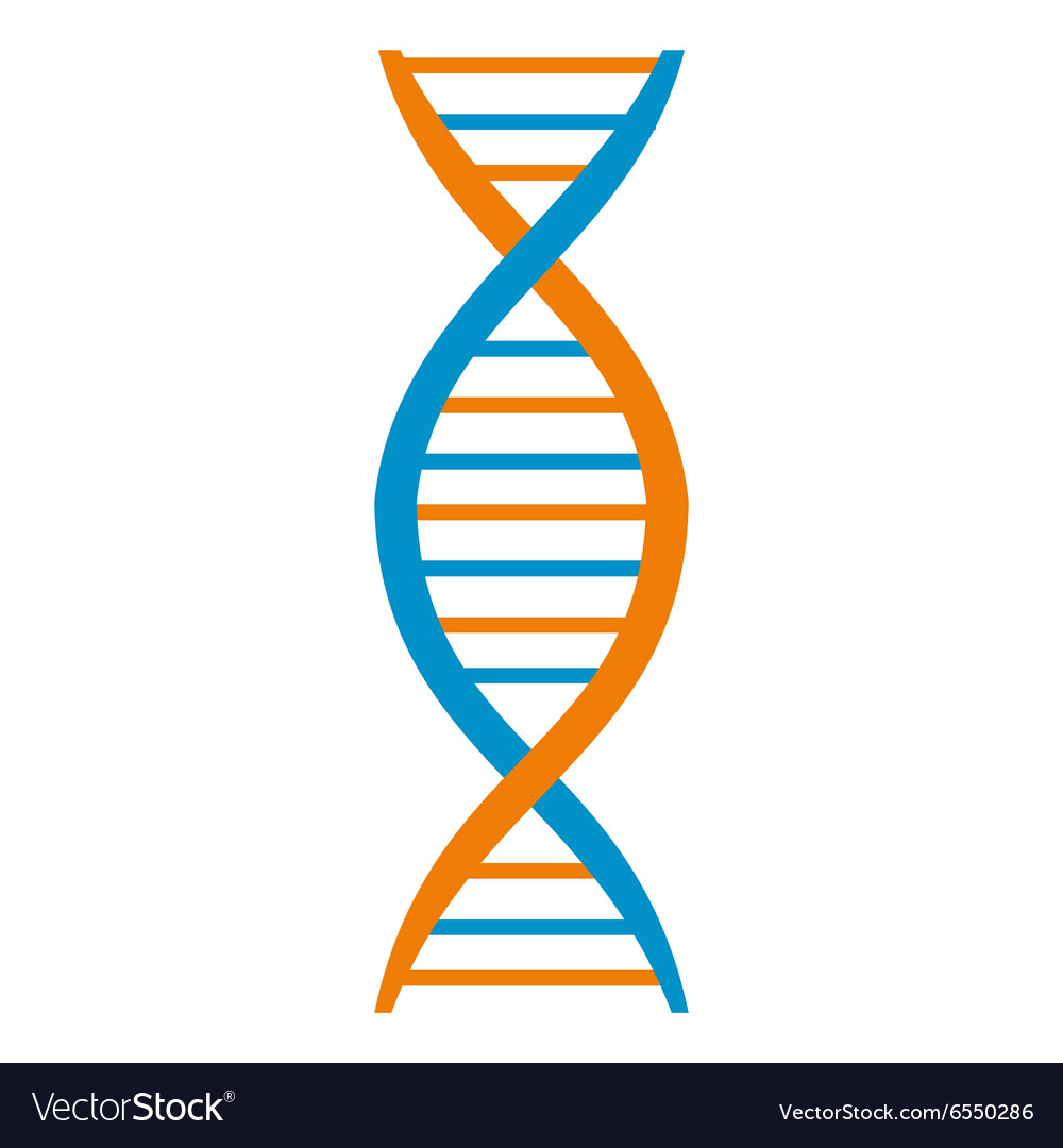 Dna and molecule symbol vector