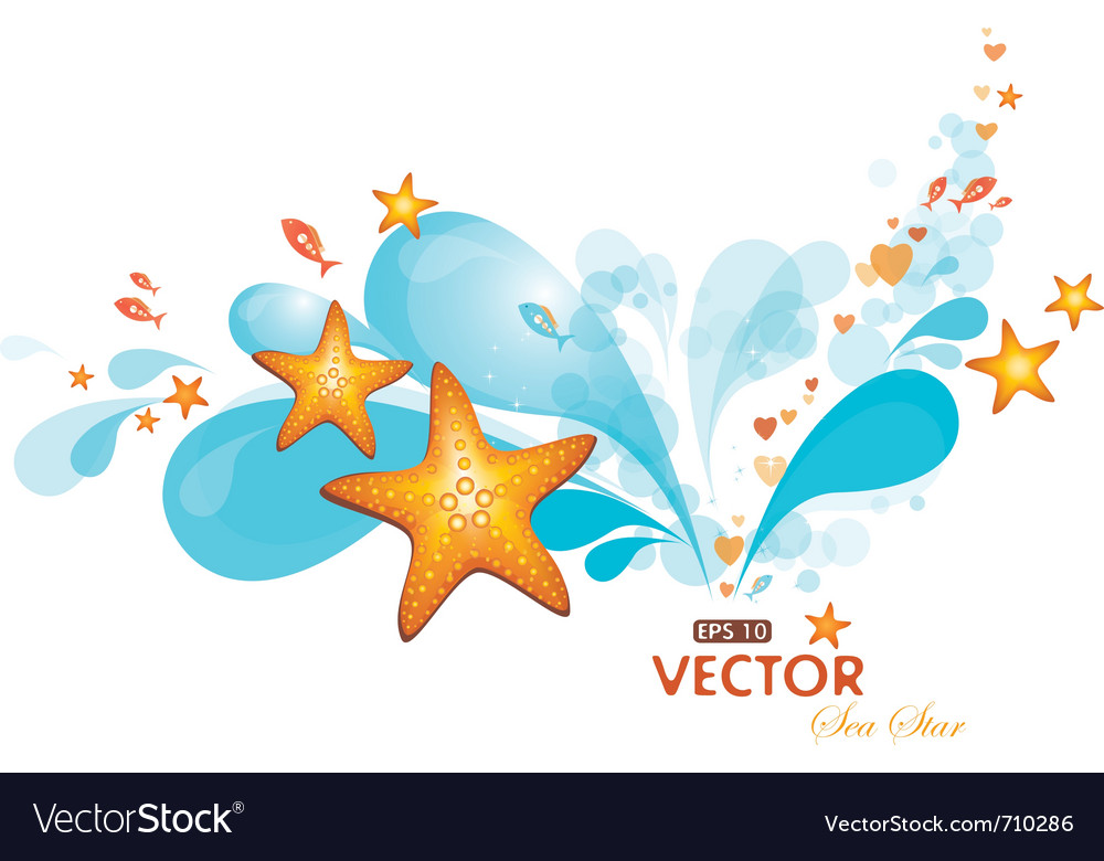 Water spray and seastars vector