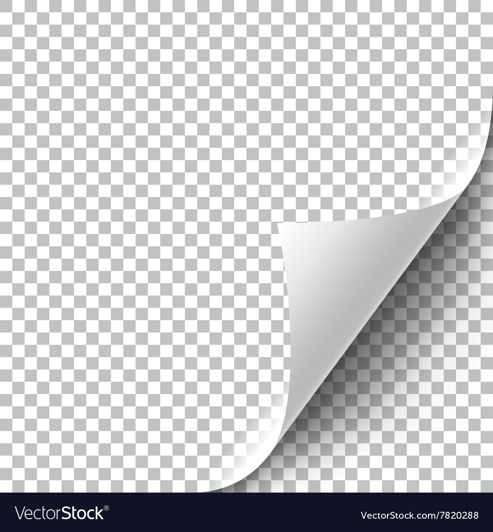 Curly page corner vector