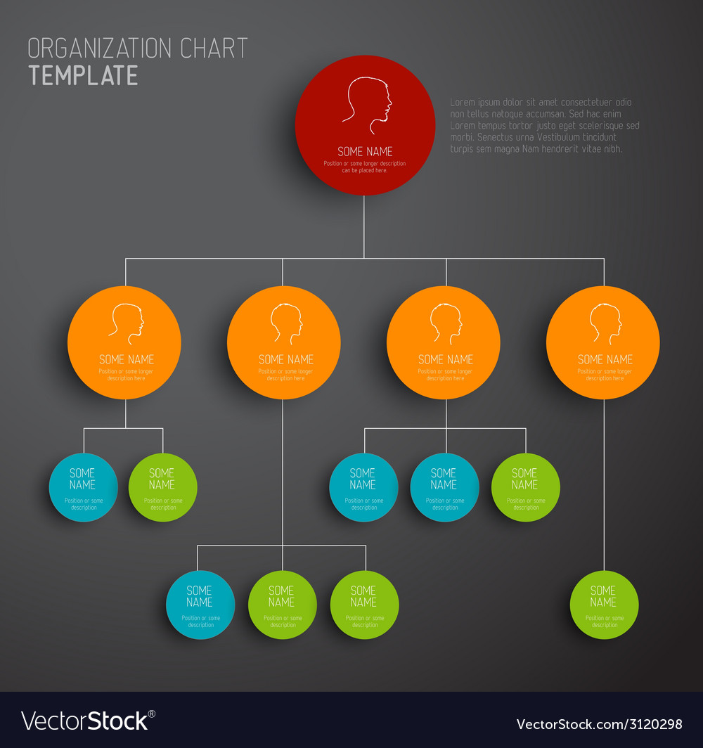 Modern and simple organization chart template vector