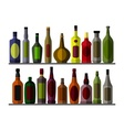 Collection bottle for vector image