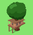 house on tree isometric vector image
