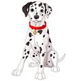 Cute Dalmatian Dog vector image vector image