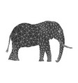polygonal elephant pattern vector image
