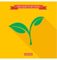Green leaf tea into flat style icon vector image