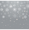 Realistic falling snowflakes isolated on vector image