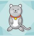 Cute kitten collar feline pet image vector image