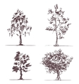 Set of four sketches trees vector image