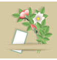 flowers and the card vector image vector image