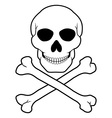 pirate skull and crossbones 01 vector image